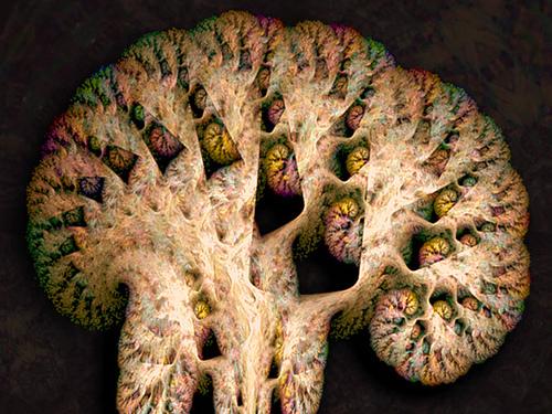 accumlative mind