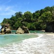 manuel antonio costa rica main
