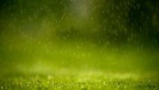 meditation in rain main