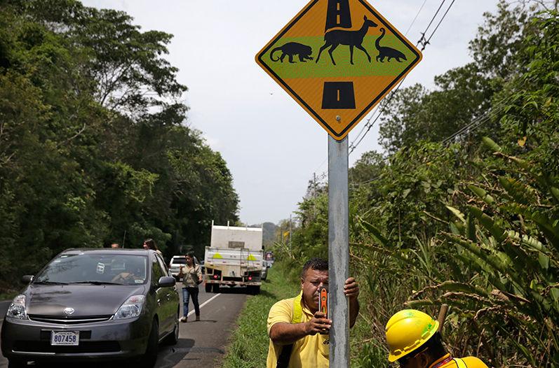 wildlife crossing sign costa rica