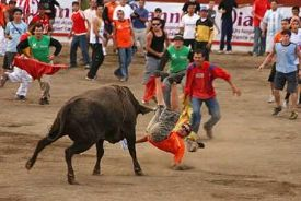 bullfighting costa rica