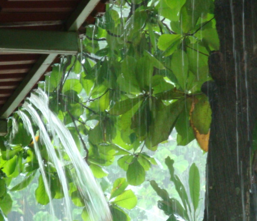costa rica rains