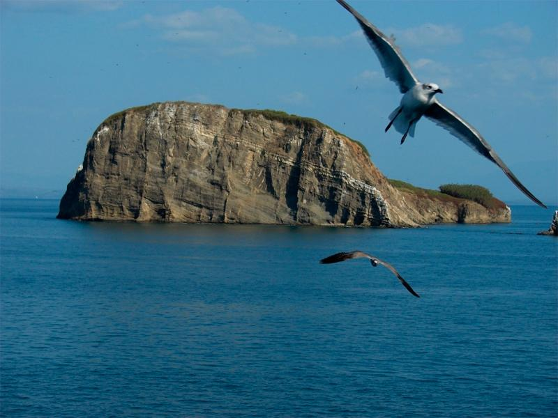 Bolaños Island costa rica