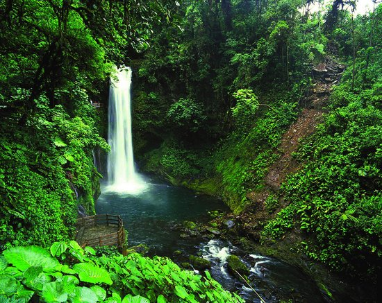 corcovado-national-park-osa-costa-rica-1