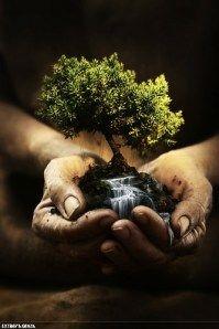 Earth hospice 1