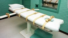 Pfizer lethal injections