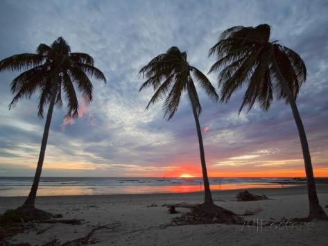 Playa Guiones costa rica 1