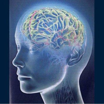 Psychological Memory 1