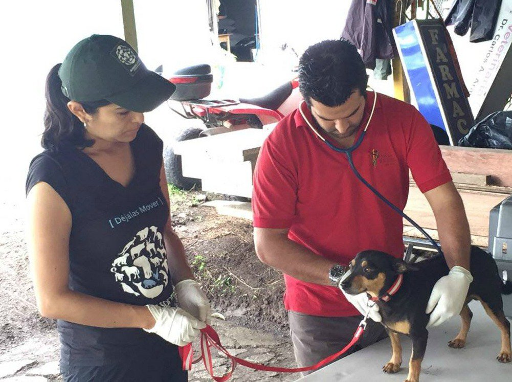 animal-rescue-costa-rica-1