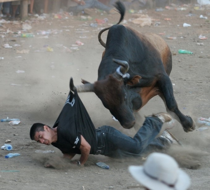 costa rica bullfights 1