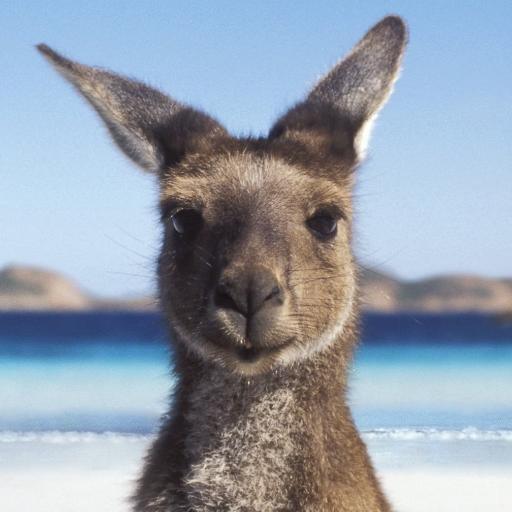 costa-rica-immigration-australia