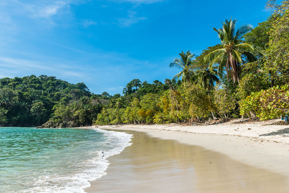 facts about costa rica 10 quick essential cultural facts to know about costa rica by shannon   costa ricans are very fun-loving, friendly people they love to joke.