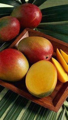 costa rica mango 1