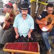 costa rica street musicians main