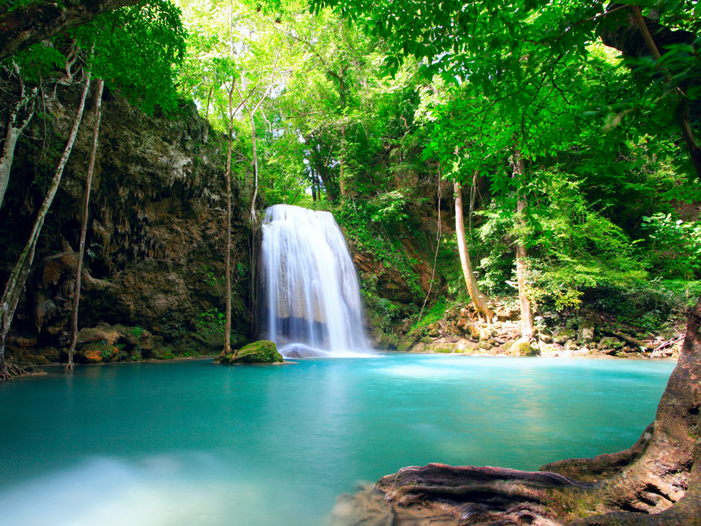 costa rica vacation and pura vida