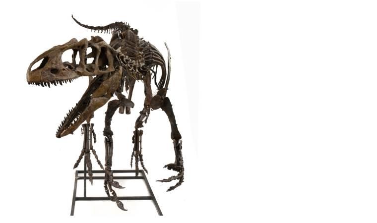 dinosaur for auction