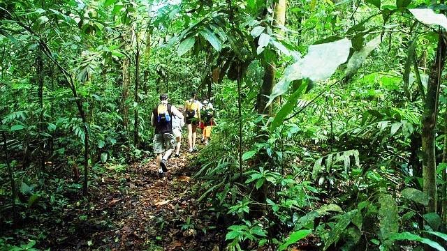 eco friendly costa rica
