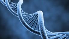 genetics main