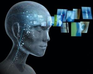 human brain consciousness
