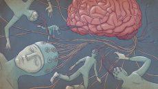 human psychology and consciousness main