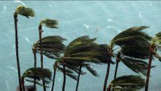 hurricane-matthew-atlanta-roofing-storm-chasers