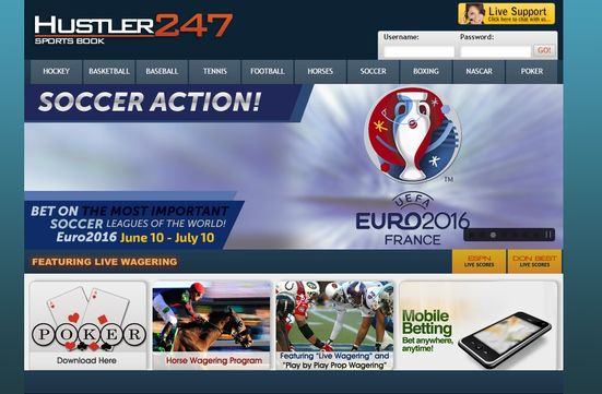 hustler 247 online sports book