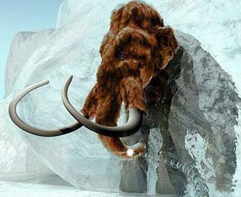 ice age costa rica 1