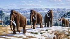 ice age costa rica main