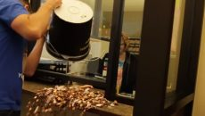 man pays traffic ticket in pennies in Texas