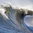 mavericks waves surf contest