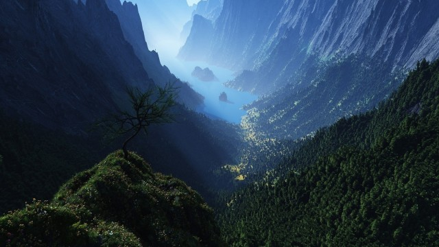 nature beauty main