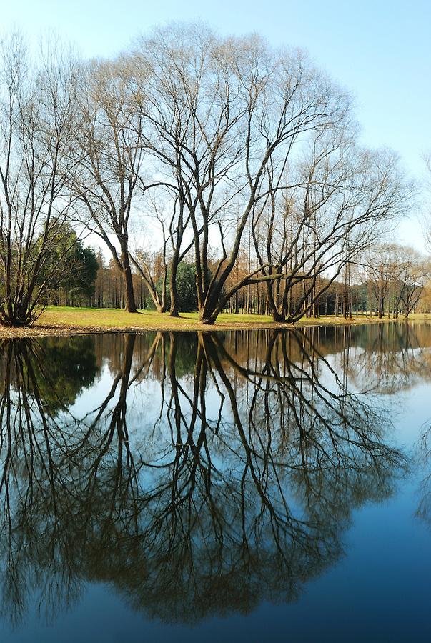 nature mirror 1
