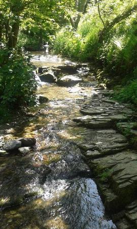 peaceful-stream