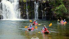 ponderosa-adventure-park