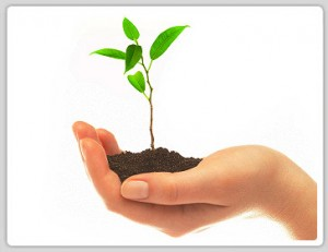 reduce carbon emissions costa rica