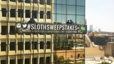 sloth sweepstakes costa rica