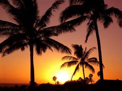 sunny costa rica 1