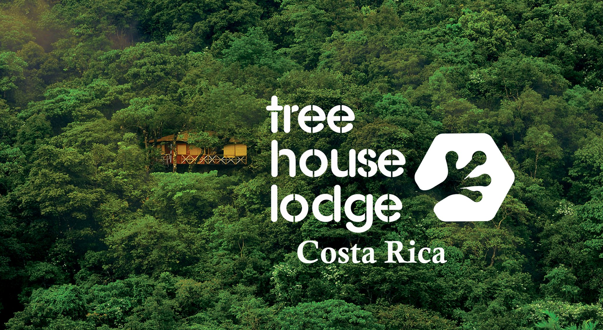 Costa rica 39 s tree house lodge to accept bitcoin payments for Tree house costa rica