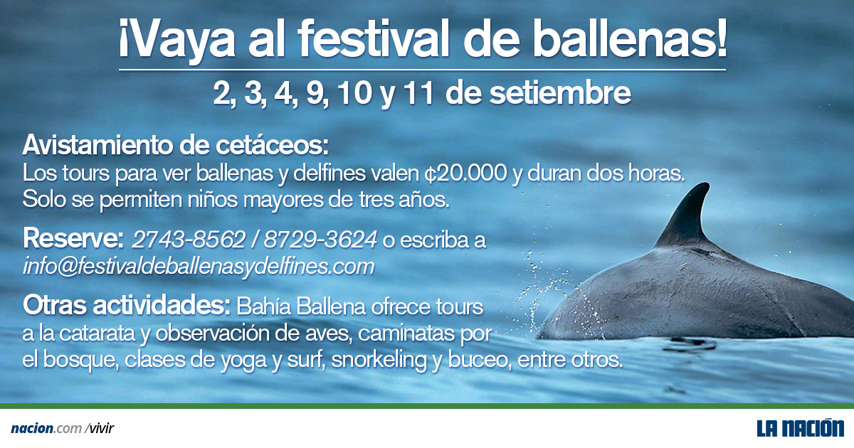 whale and dolphin festival costa rica