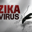 zika virus costa rica main